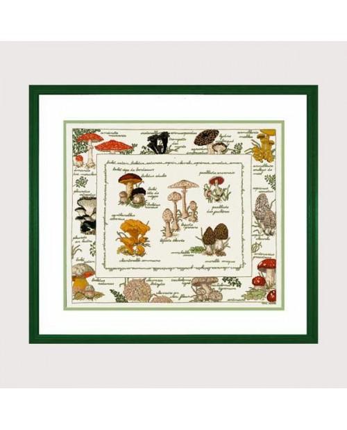 Mushrooms. Counted cross stitch embroidery kit. Le Bonheur des Dames 1193