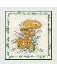 Light yellow mushroom
