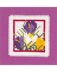 Mini card crocus