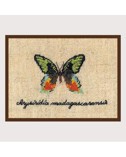 Green butterfly miniature