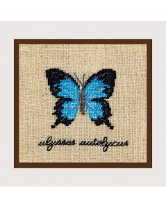 Blue butterfly miniature