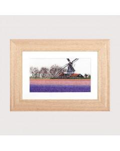 Bulbfield Hyacinths