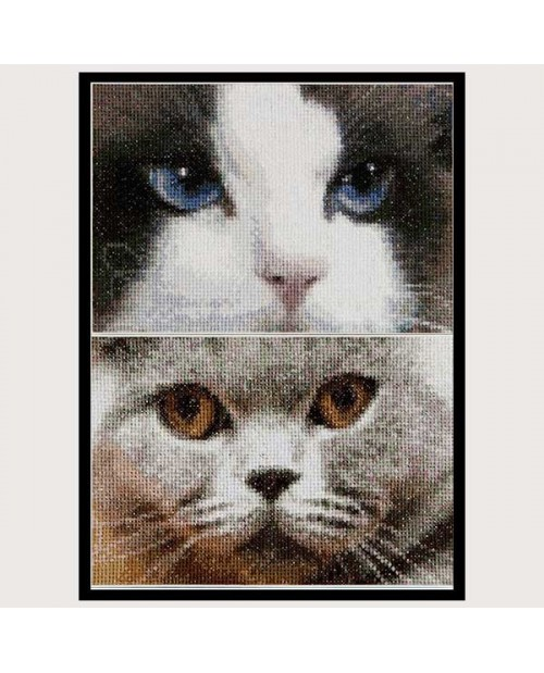 Smokey and Blu