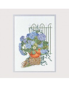 Blue hortensias