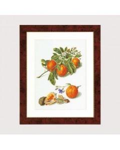 fruitportret antiek 1