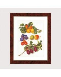 Fruitportret antiek 2