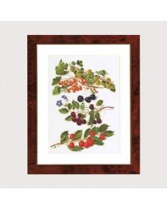 Fruitportret antiek 3