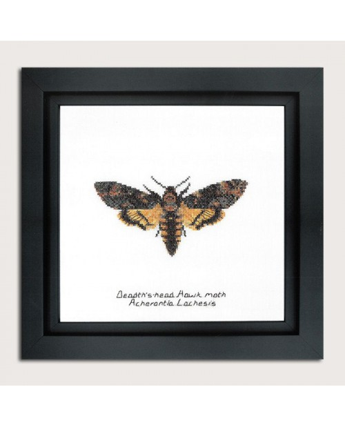 Counted cross stitch embroidery kit. Death's-head Hawk moth. Thea Gouverneur. Item n° 563A