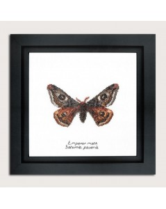 Kit broderie point de croix, point compté. Papillon de nuit Emperor moth. Thea Gouverneur. Référence G0562A