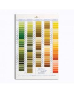 DMC Color catalogue. Samples of DMC threads. W100B. Variation, pearl, metallic, cotton. Green, yellow, orange.